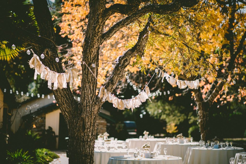 Dollar Tea Club, Outdoor Wedding Reception, June Summer Wedding, Herbal Tea Recipe, Using Tea in Your Wedding