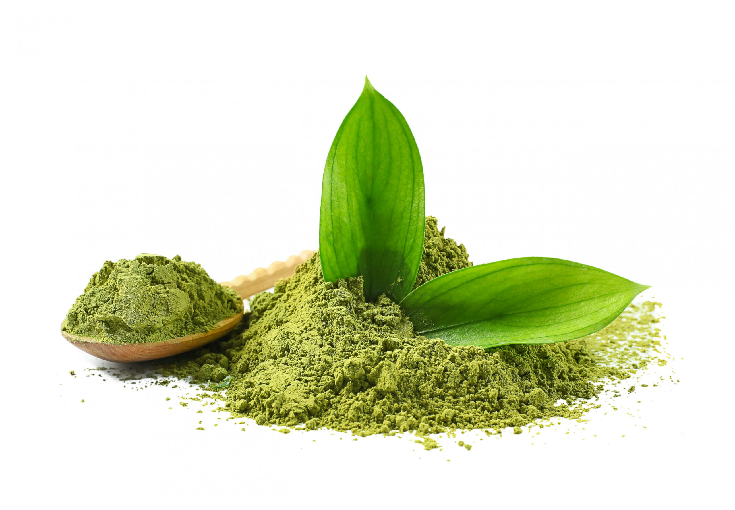 Difference between Matcha and Hojicha